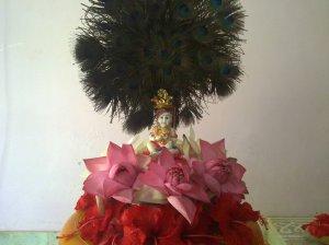 Kutty Krishna In my Home....